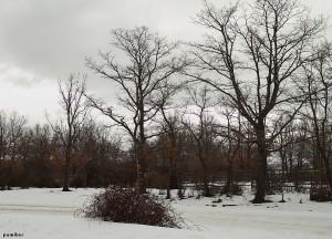 Un paseo por Rascafría en una buena ocasión para, en esta época de año, ver nieve y hielo.